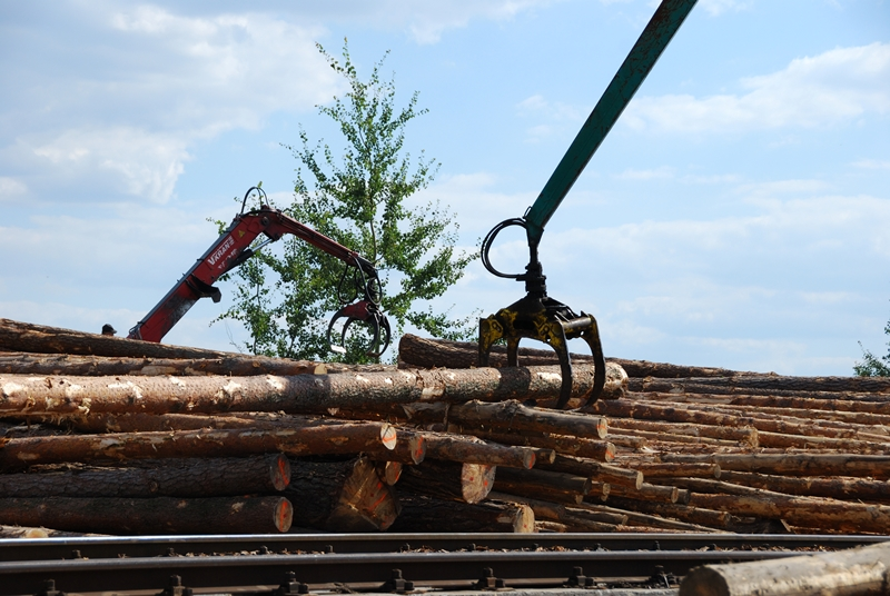 Skład drewna -tartak Radom